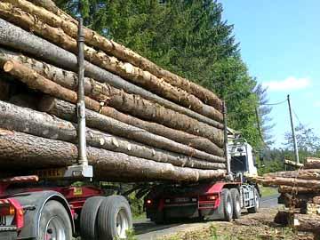 Transport de bois de chauffage gros volume