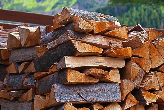promo bois frais pour finir de secher