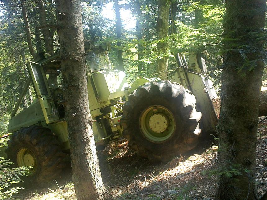 VNBL - travaux forestiers professionnels